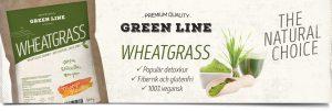 Green Line Wheatgrass